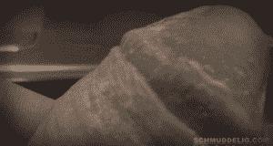 Nillenkäse vom Schwanz lutschen.